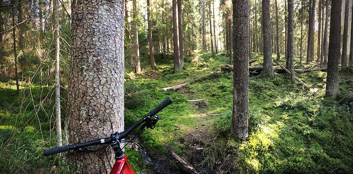Cykelstig i Rudskogen